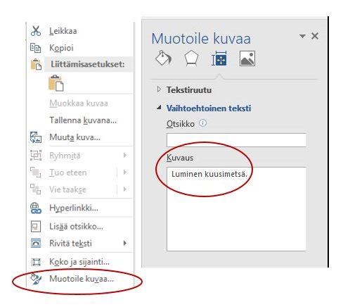 Ruutukaappaus, jossa tekstivastineen lisääminen kuvaan Word-tekstinkäsittelyohjelmassa.